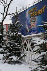 """Fast wäre der Tag """"Daisy"""" zum Opfer gefallen: Schnee und Glatteis!"""